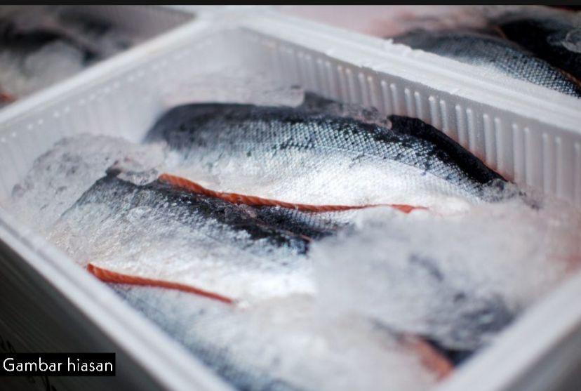 Sindiket seludup dadah guna kotak polisterin ikan sejuk beku tumpas